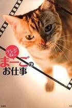 森、中曽根、菅…政治猫・まーごが嫌った政治家は誰だ!?