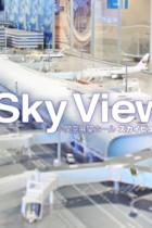 関西空港の惨状は経営効率優先の運営会社による「人災」か? 民営化を「自分の手柄」と吹聴していた橋下徹は
