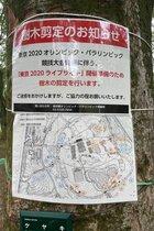 東京五輪は本当に国民犠牲の実験場に…代々木公園では木々を剪定しパブリックビューイング会場を設営開始、しかも電通が巨額で落札
